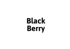 Sansie Black Berry